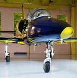 Aeroplano del jet fotografía de archivo