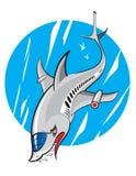 Aeroplano dello squalo Fotografia Stock