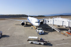 Aeroplano di All Nippon Airways (ANA) Fotografia Stock Libera da Diritti