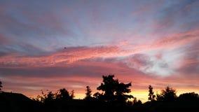 Aeroplano en la puesta del sol Foto de archivo