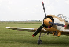 Aeroplano per la cabina di guida di esposizione di aria - formato GREZZO Fotografia Stock