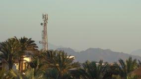 Aeroplano que vuela sobre la palmera tropical y la salida del sol en las montañas almacen de video