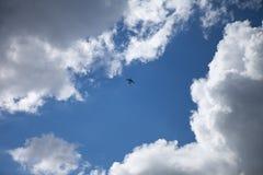 Aeroplano su cielo blu Immagini Stock Libere da Diritti