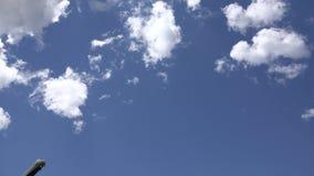 Aeroplanos, aviones de pasajeros, aviones, vuelo, nubes, nubladas almacen de video
