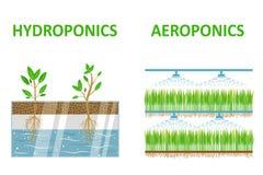 Aeroponic och hydroponic arkivfoton