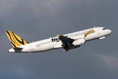 Aeroporto internacional de partida de Tiger Airways Airbus A320-232 VH-VND Melbourne Fotografia de Stock Royalty Free