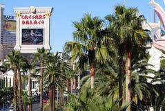 Aeropuerto internacional de McCarran, tira de Las Vegas, Caesars Palace, árbol, calzada, vacaciones, centro turístico Imagenes de archivo
