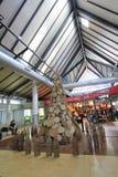 Aeropuerto internacional de Siem Reap Imágenes de archivo libres de regalías