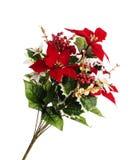 Aerosol de las flores de la Navidad Imágenes de archivo libres de regalías