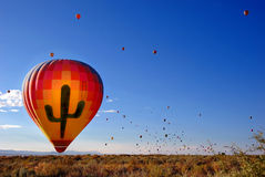 Aerostato del cactus Immagine Stock
