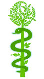 Aesculapius staff, Nature. Medicine and pharmaceutical Royalty Free Stock Image