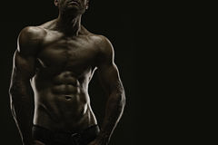 Aesthetic bodybuilding. Handsome athletic young aesthetic man isolated on black Royalty Free Stock Photography