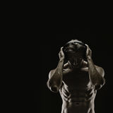 Aesthetic bodybuilding Stock Images