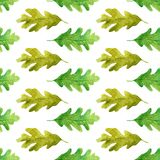 Watercolor laconic oak leaves seamless pattern royalty free illustration