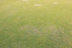 Aewdrop auf dem Rasen am hellen Morgen und am wirklichen grünen Gras b Stockfotografie