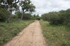 Afari-Park mit Auto Lizenzfreie Stockfotos