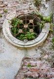 Afbrokkelende mausoleummuur met ronde venster en ijzerbars, en installaties die uit barsten kweken, als geweven achtergrond royalty-vrije stock afbeeldingen