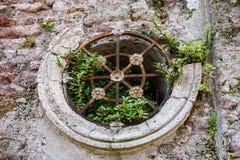 Afbrokkelende mausoleummuur met ronde venster en ijzerbars, en installaties die uit barsten kweken, als geweven achtergrond stock fotografie