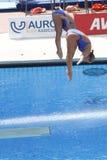 Afd.: Def. van Sychronised van wereldkampioenschap 3m vrouwen Stock Foto