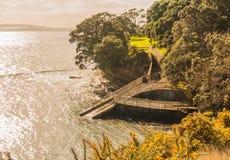 Afdaling aan het overzees, Whangaparaoa-Schiereiland, Nieuw Zeeland Royalty-vrije Stock Afbeelding