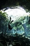 Afdaling in cenote Stock Foto's