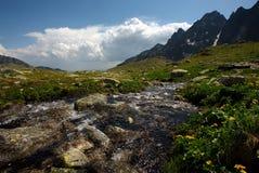 Afdrijvende bergkreek op plateau Stock Afbeelding