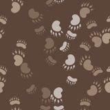 Afdruk van de poot van de beer stock illustratie