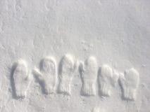 Afdruk van vuisthandschoenen in sneeuw Royalty-vrije Stock Afbeeldingen