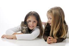 Afecto para el gatito Imagen de archivo