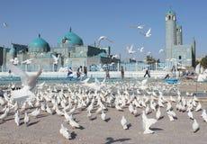 afeganistão Mesquita em Mazari Sharif Fotografia de Stock