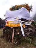 Afer мертвое стоковое изображение rf
