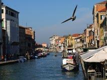 Affär i kanal i Venedig arkivbilder