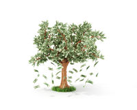 Affärs- eller besparingbegrepp av Arkivfoto