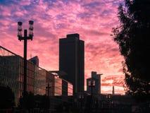 Affärsbyggnader på soluppgång i Frankfurt, Tyskland Arkivbild