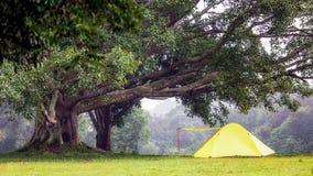 Affärsföretag som campar under det near vattnet för skog som är utomhus- i mornin Fotografering för Bildbyråer