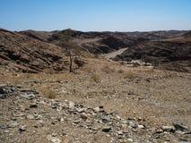 Affärsföretagresan till och med utmärkt vaggar bakgrund för bergpanoramalandskapet av unik geografi för den Namib öknen med den b royaltyfri fotografi