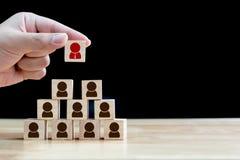 Affärsidé för personalresursledning och rekrytering, trä Royaltyfri Foto