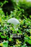 Affärsidé: TID som FÖRBÄTTRAR ord på grön bakgrund royaltyfri fotografi
