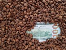 affärskaffe, 100 dollar sedel med bakgrund för kaffebönor Royaltyfria Bilder
