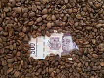 affärskaffe, 500 pesos av den Mexico sedeln som omges av grillade kaffebönor Arkivbilder