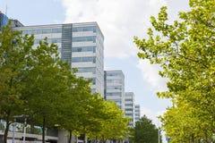 Affärskontoret står högt i perspektiv Royaltyfri Bild