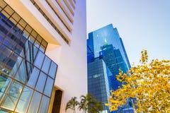 Affärskontorsbyggnader, företags begrepp fotografering för bildbyråer