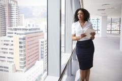 Affärskvinna With Digital Tablet vid fönstret av det nya kontoret royaltyfri fotografi