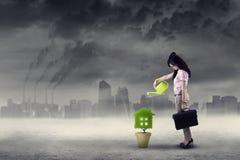 Affärskvinna som bevattnar växten under luftförorening royaltyfri bild