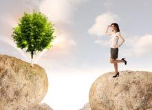 Affärskvinnan vaggar på berget med ett träd Royaltyfria Bilder