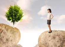 Affärskvinnan vaggar på berget med ett träd Arkivbild