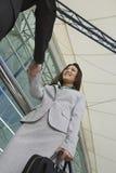 Affärskvinnor som hälsar den manliga kollegan Arkivfoton