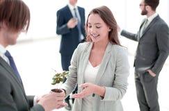 Affärsman och affärskvinna som rymmer en kruka med groddar arkivfoton