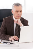 Affärsman på arbete. Arkivbild
