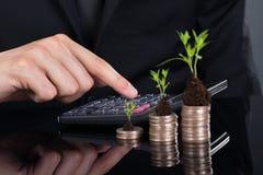 Affärsman som använder räknemaskinen vid staplade mynt med växter royaltyfria foton